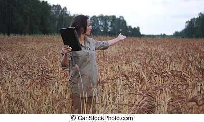 Farmer woman working with tablet on wheat field. agronomist ...