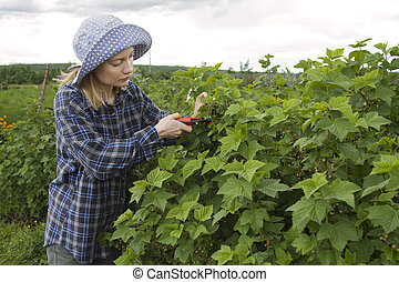 Farmer_3 - Agricultural portrait of the woman with a...