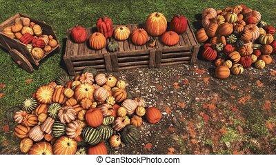 farmer?s, automne, potirons, marché, récolte