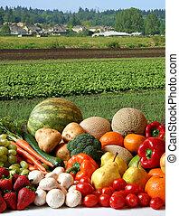 Farmer's crop