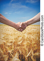 Farmers handshake with wheat field in harvest time