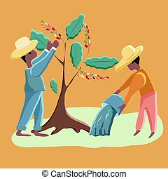 Farmers harvest coffee and water coffee trees. Vector illustration. Cutie cartoon characters. Men on a coffee plantation.