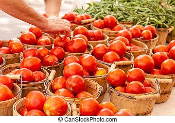 Customer choosing fresh organic red tomatoes at local farmers market