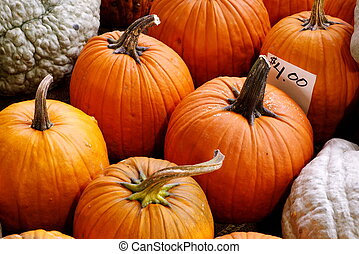 pumpkins and squash for sale at farmers market
