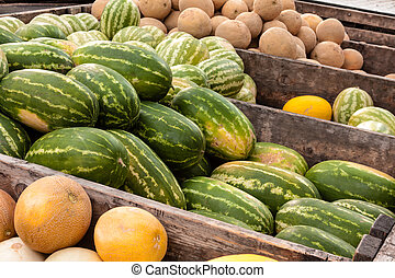 Truck load of fresh locally grown watermelons, cantaloupes and casaba melons for sale at local farmers market