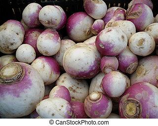 Farmers Market Turnips close-up