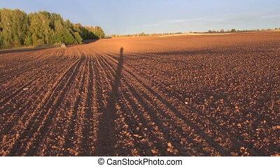 farmers shadow on plowed field - farmers shadow on plowed...