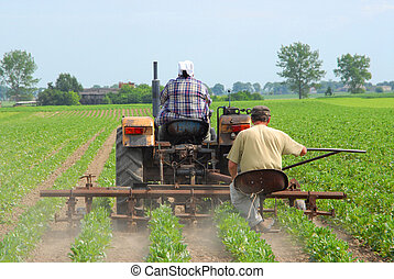 Farmers working, cultivating land, agricultural issues