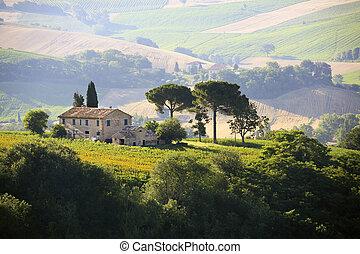 farmház, alatt, olasz, vidéki táj