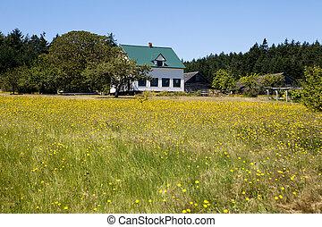 Farmhouse, Barn, And Field