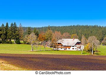 farmhouse, floresta preta, típico