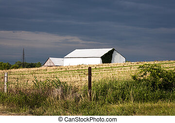 farmhouse in a field