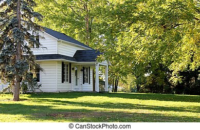 Farmhouse in the trees