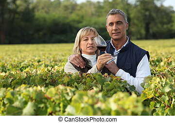 Farming couple holding glass of wine in vineyard