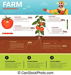 Farming Infographics Eco Friendly Organic Natural vegetable...
