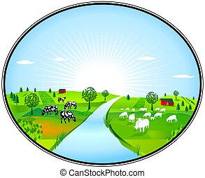 Farming panorama
