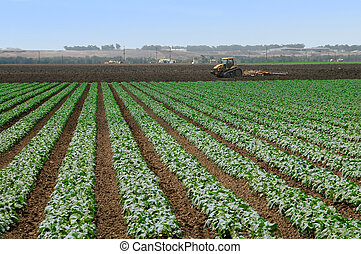 Farming - Getting ready for the next crop
