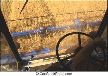 The Combine takes away the wheat.