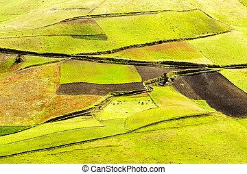 Farmland In Andes