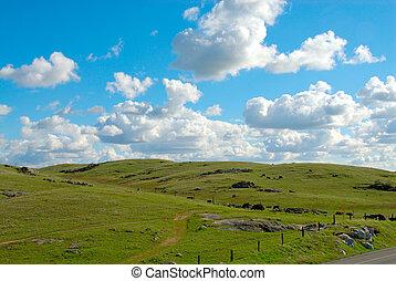 Farmland in California USA, a grassy knoll against a ...