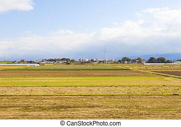 Farmland in Japan