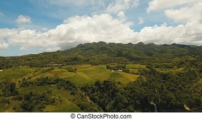 Farmland in province Philippines - aerial footage rice...