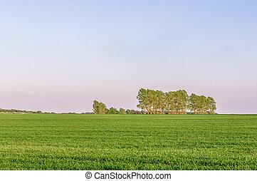 Farmland in rural Suffolk, UK