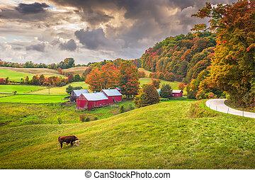 Farmland in Vermont - Reading, Vermont, USA rural farm scene...