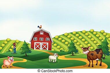 farmland, krajobraz, natura