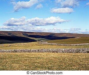 Farmland, Malham, Yorkshire Dales.