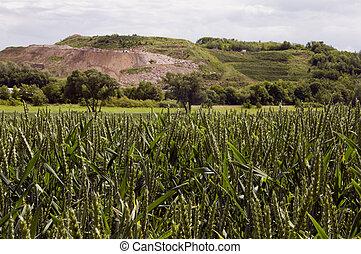 farmland n front of a landfill