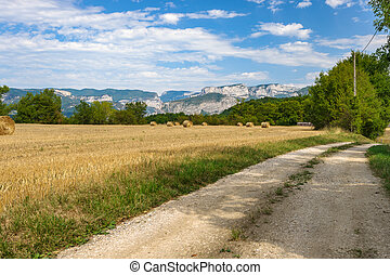 Farmland road in a mountain landscape with fields filled with hay bales