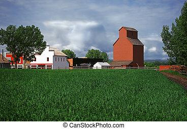 farmland - Farmland in Alberta, Canada