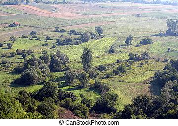 farmland summer landscape