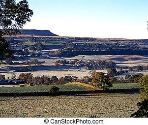 Farmland, Wensleydale, Yorkshire.