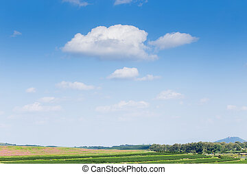 farmland with blue sky