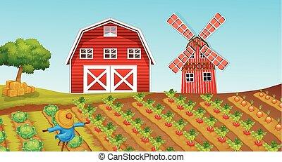 Farmland with crops on the farm