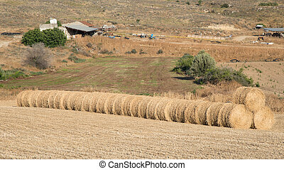 Farmland with hay bales after harvesting