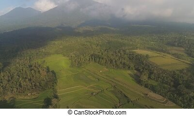 rural landscape with farmlands, rice terraces against mountains. Aerial view agricultural land on mountainside. tropical landscape Bali, Indonesia.