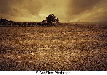 farmlend