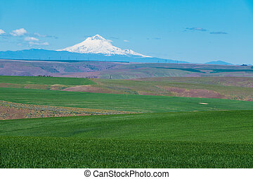 Farms and ranches in Oregon with Mount Hood in the ...