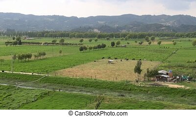 Farms, Farmland, Agriculture, Food