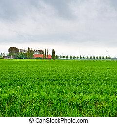 farmstead