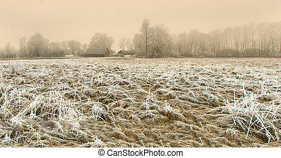 Lithuanian farmstead in winter, early in the morning