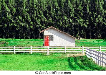 Farn house