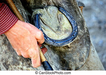 Male farrier working on a horseshoe.