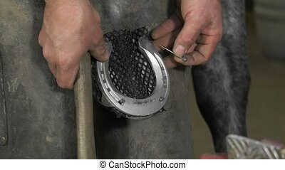 Farrier nails aluminium horseshoe