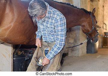 Farrier shoeing horse
