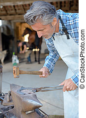 farrier tapping a hoof