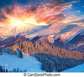 farverig, bjerge., vinter, solopgang